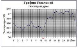 Самостоятельная расшифровка графика базальной температуры